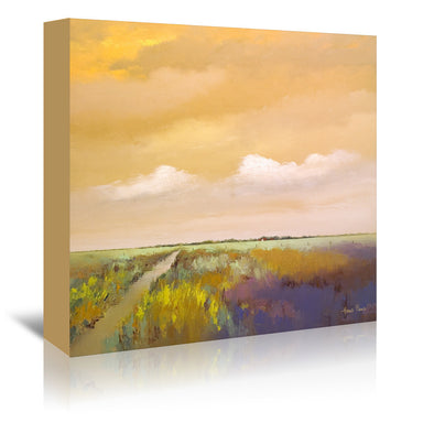 Colorful Farmland By Hans Paus - Wrapped Canvas - Wrapped Canvas - Americanflat