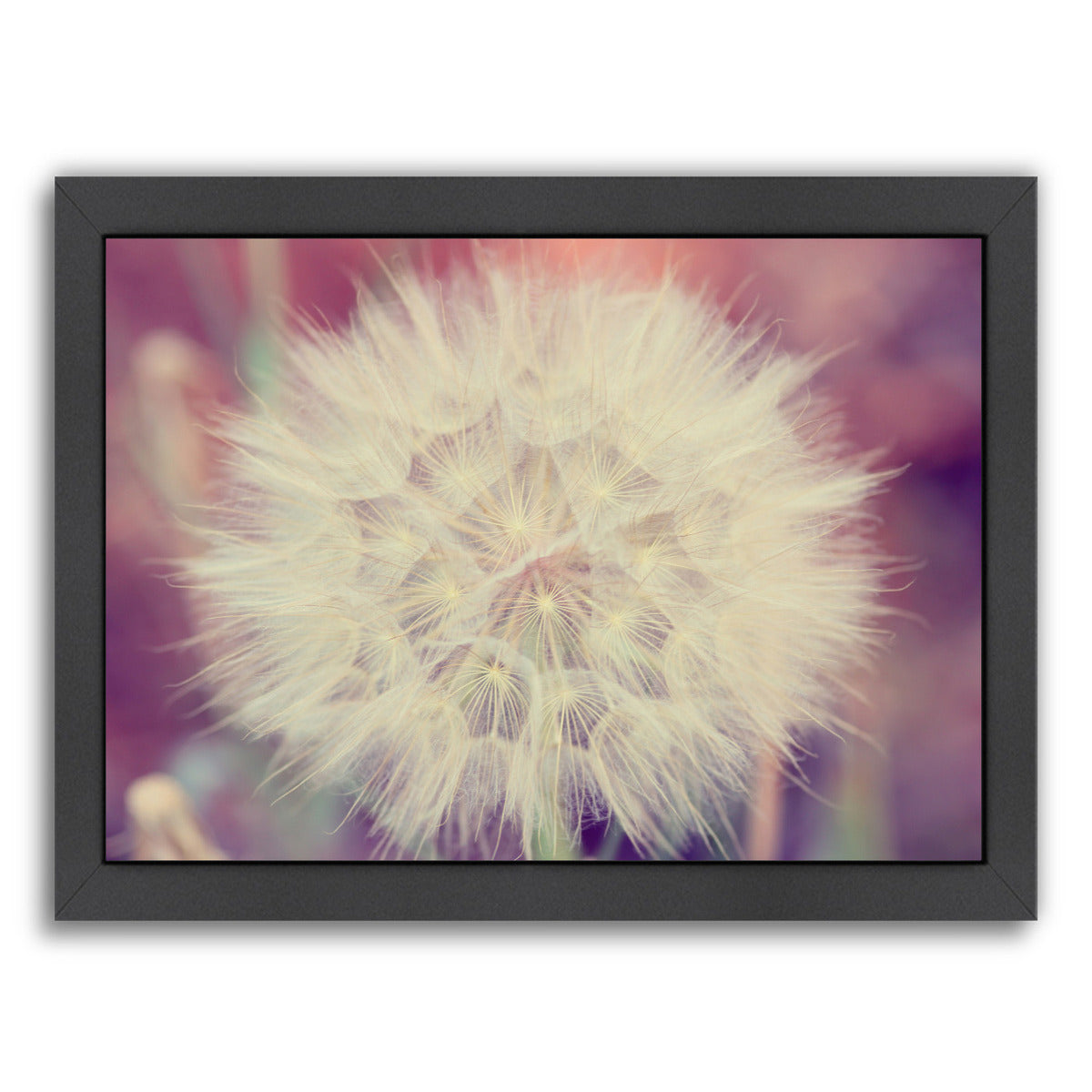 Burst Horizontal By The Gingham Owl - Black Framed Print - Wall Art - Americanflat