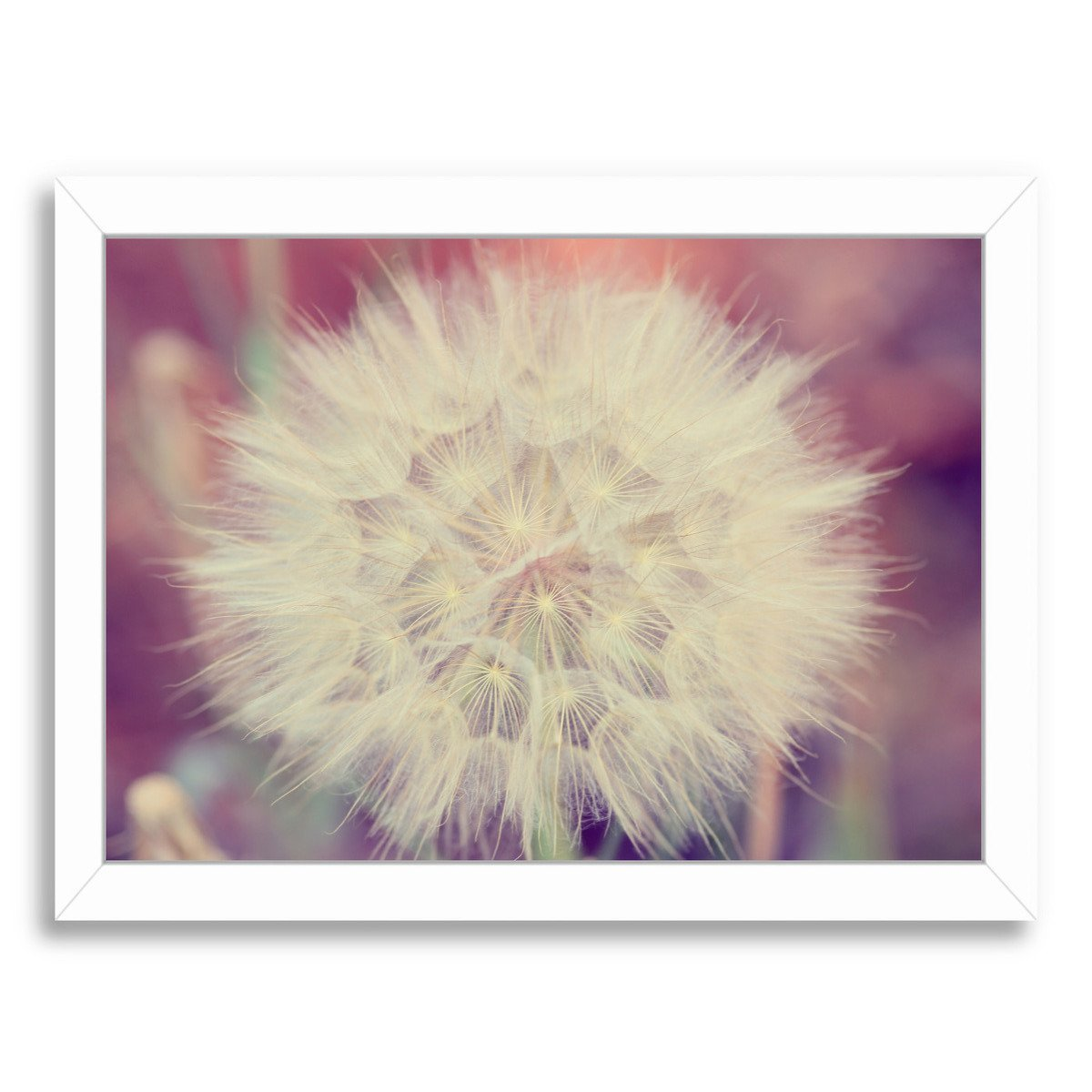 Burst Horizontal By The Gingham Owl - Framed Print - Americanflat
