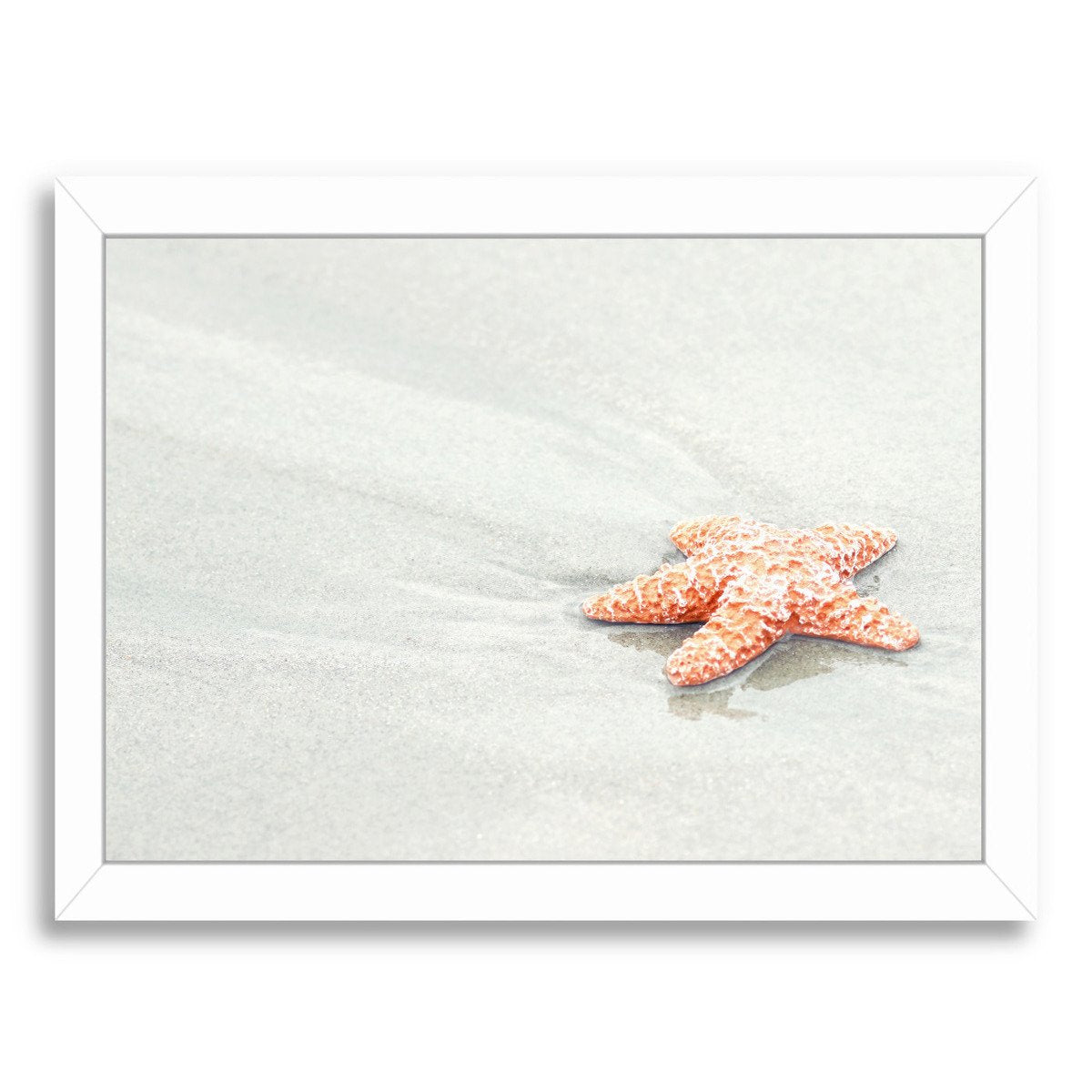 Coral Starfish By The Gingham Owl - Framed Print - Americanflat