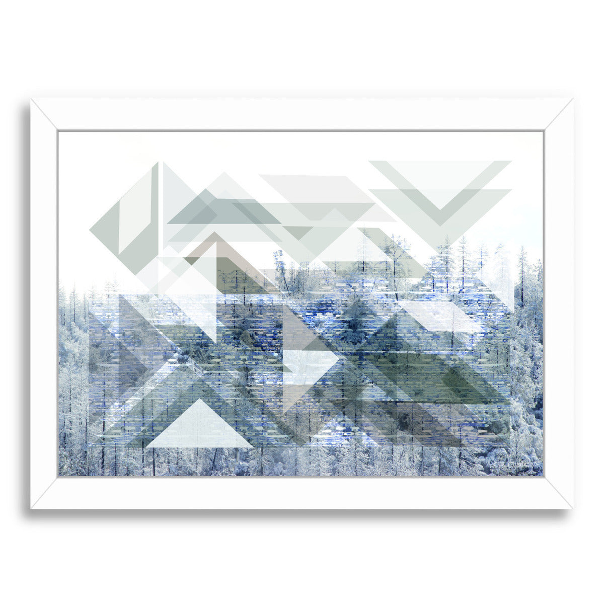 Patterns In Nature Vi by Hope Bainbridge - White Framed Print - Wall Art - Americanflat