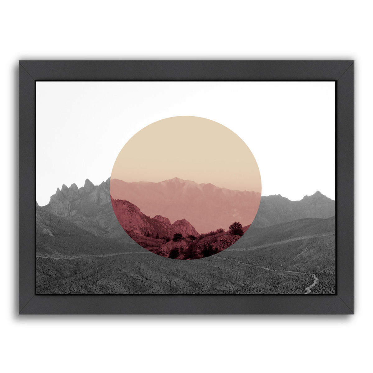 Shapes In Nature Iv by Hope Bainbridge - Black Framed Print - Wall Art - Americanflat
