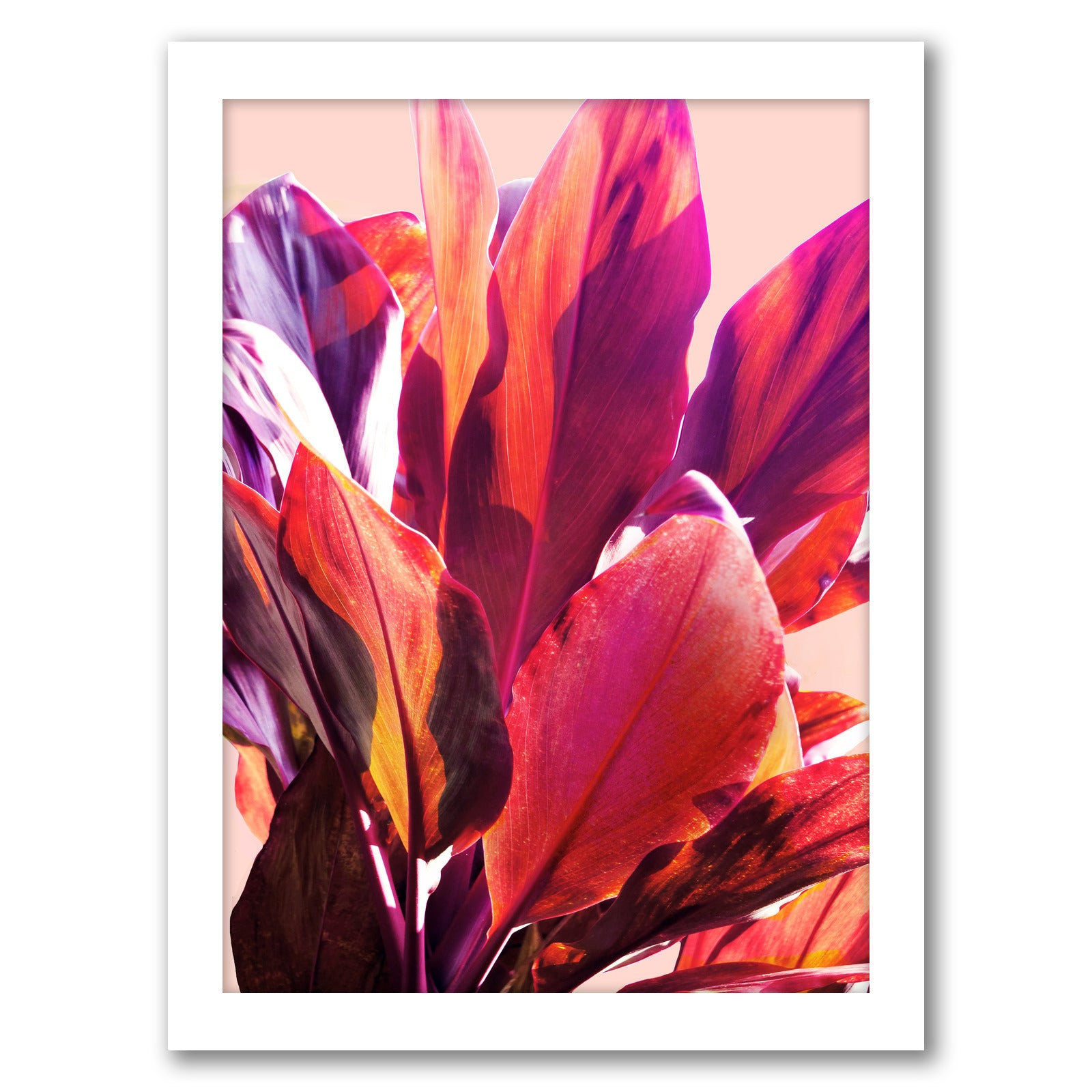 Leaves 1 by Hope Bainbridge - White Framed Print - Wall Art - Americanflat