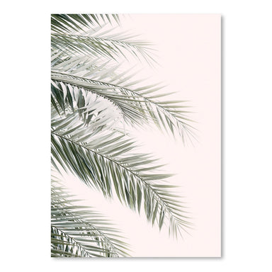 Blush Palm Leaf by Sisi and Seb - Art Print - Americanflat