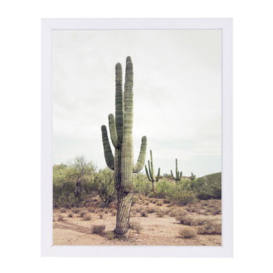 Desert Cactus By Sisi And Seb - White Framed Print - Wall Art - Americanflat