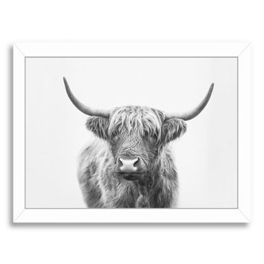 Highand Bull By Sisi And Seb - White Framed Print - Wall Art - Americanflat