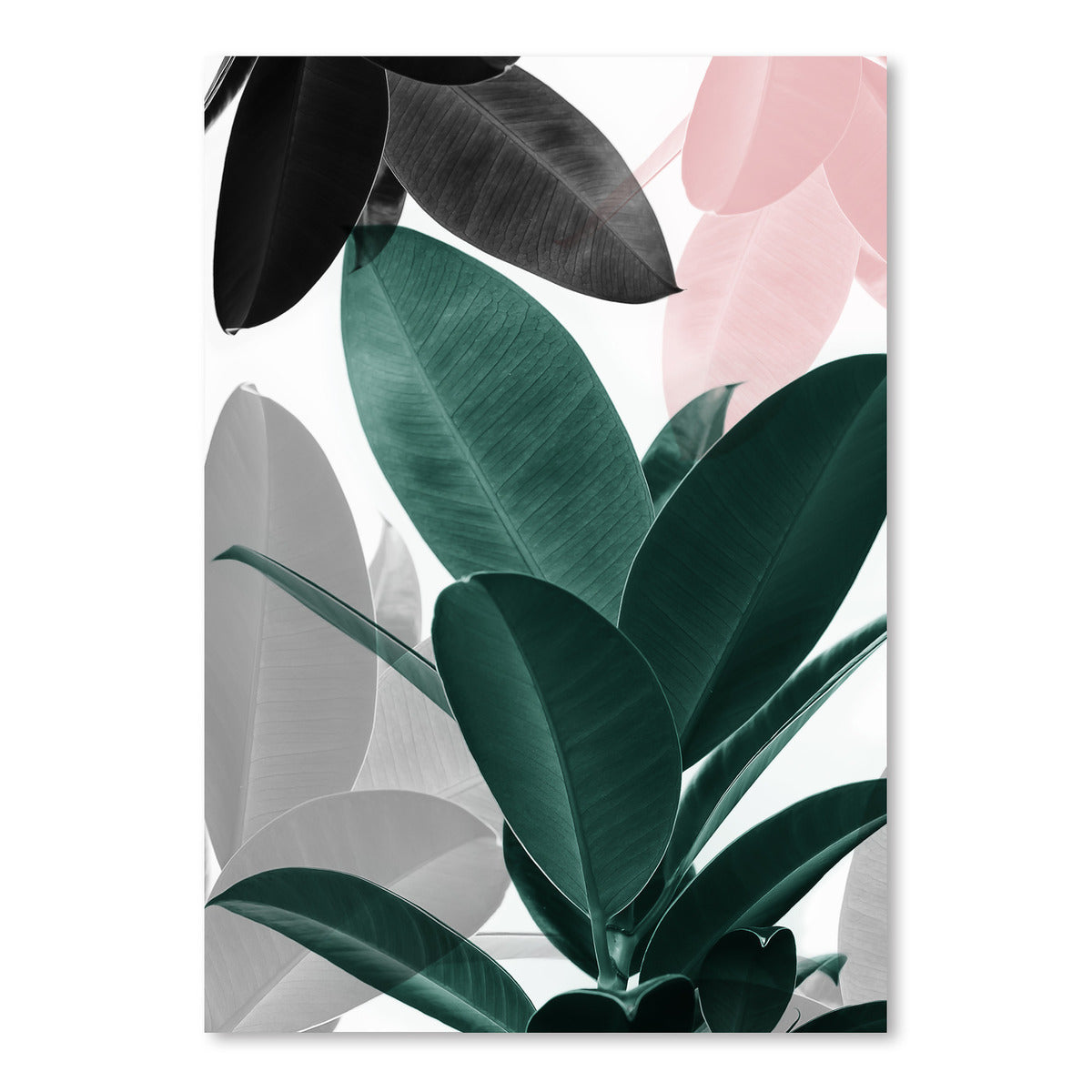 Leaf Play by Sisi and Seb - Art Print - Americanflat