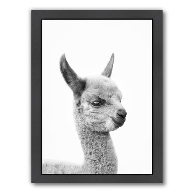 Little Alpaca By Sisi And Seb - Black Framed Print - Wall Art - Americanflat