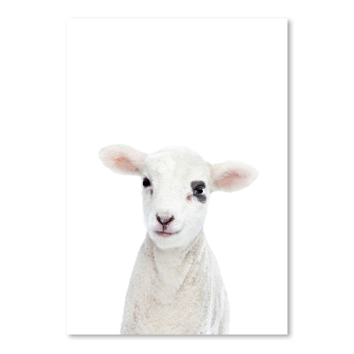 Little Lamb by Sisi and Seb - Art Print - Americanflat