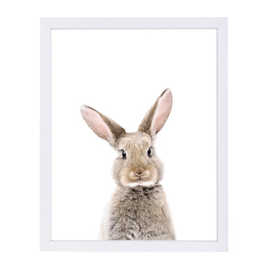 Little Rabbit By Sisi And Seb - White Framed Print - Wall Art - Americanflat