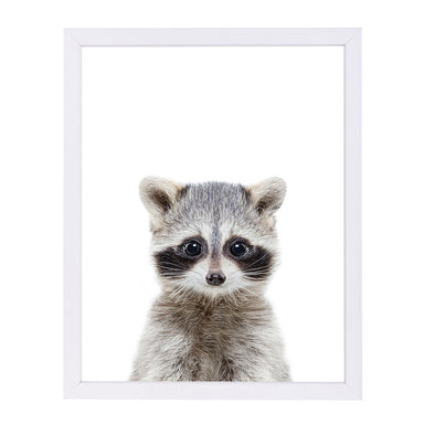 Little Racoon By Sisi And Seb - White Framed Print - Wall Art - Americanflat