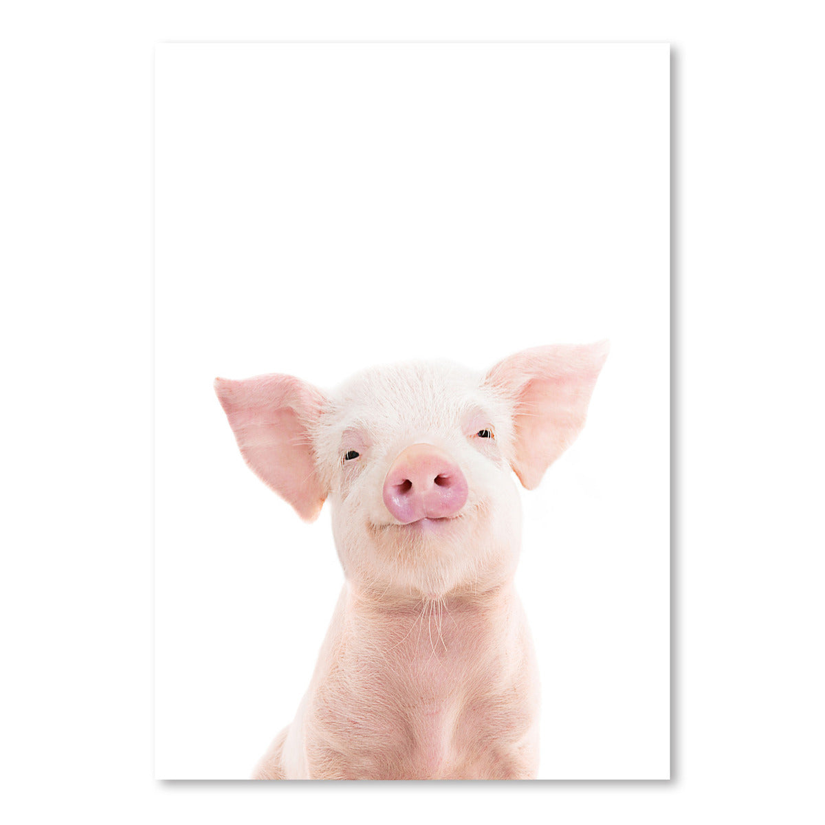 Piglet by Sisi and Seb - Art Print - Americanflat