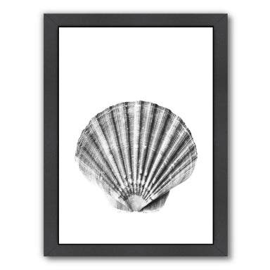 Sea Shell By Sisi And Seb - Black Framed Print - Wall Art - Americanflat