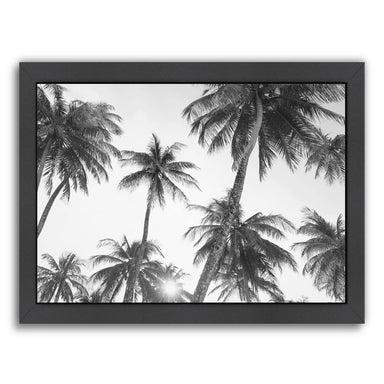 Tropical Bw By Sisi And Seb - Black Framed Print - Wall Art - Americanflat
