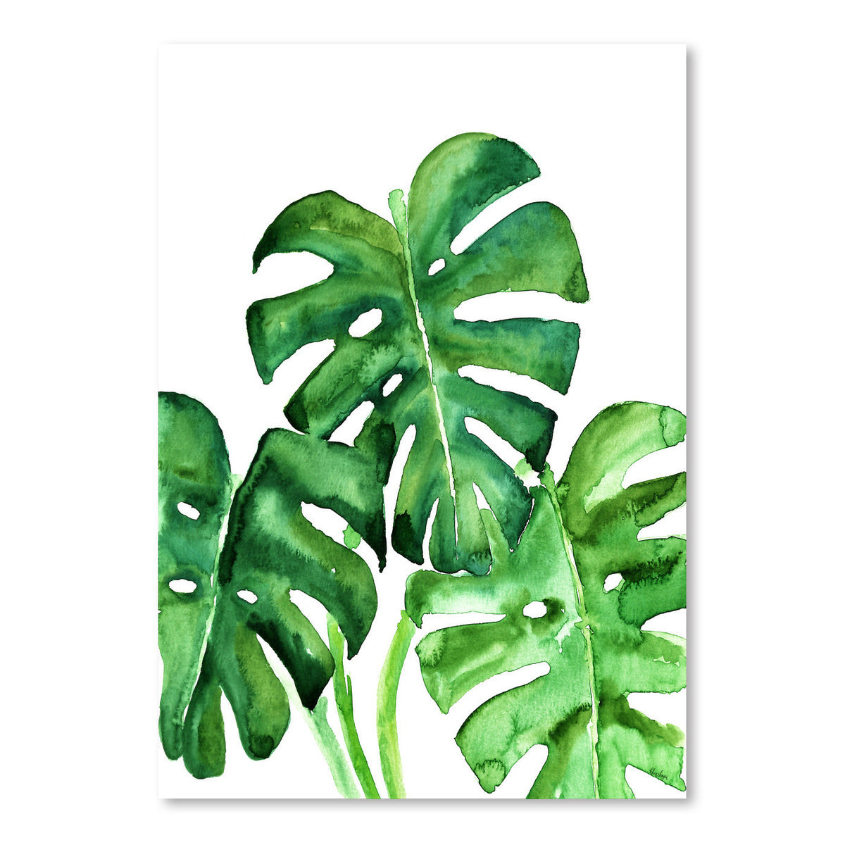 Monstera Leaves by Blursbyai - Art Print - Americanflat