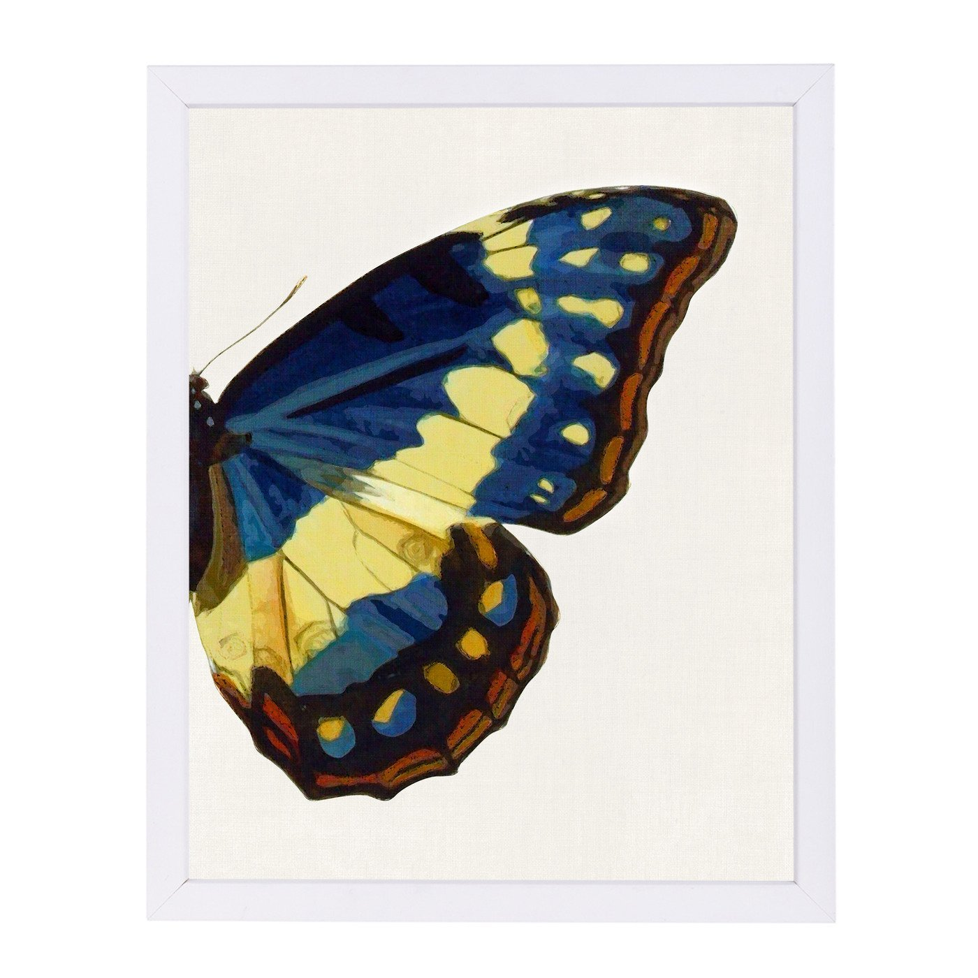 Blue Gold Butterfly Ii By Chaos & Wonder Design - White Framed Print - Wall Art - Americanflat