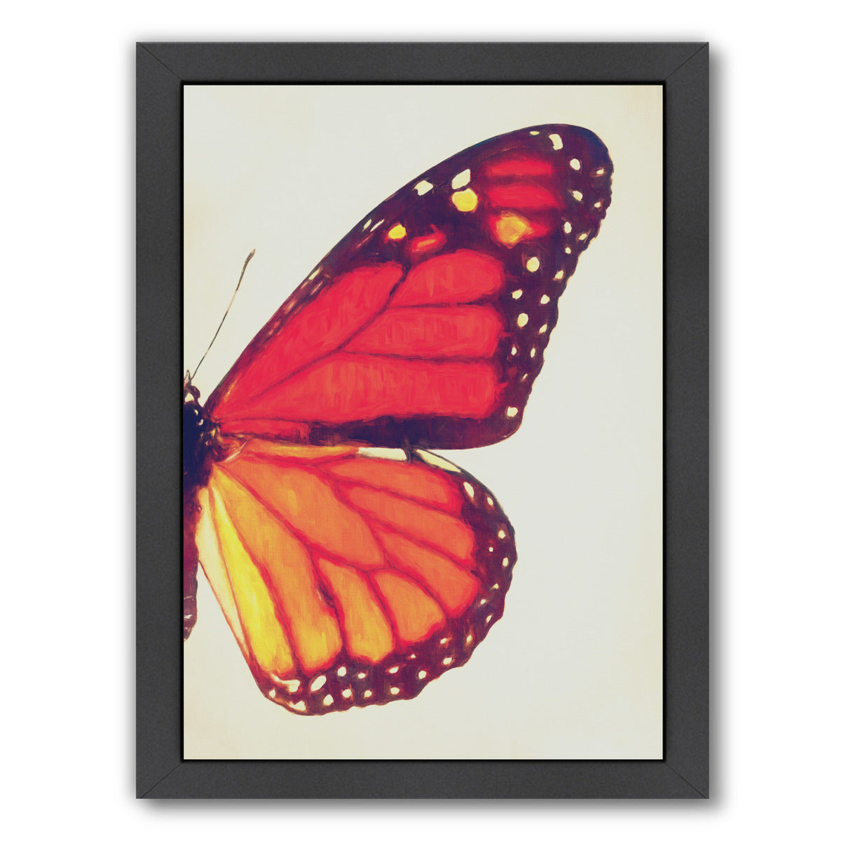 Monarch Butterfly Ii By Chaos & Wonder Design - Black Framed Print - Wall Art - Americanflat