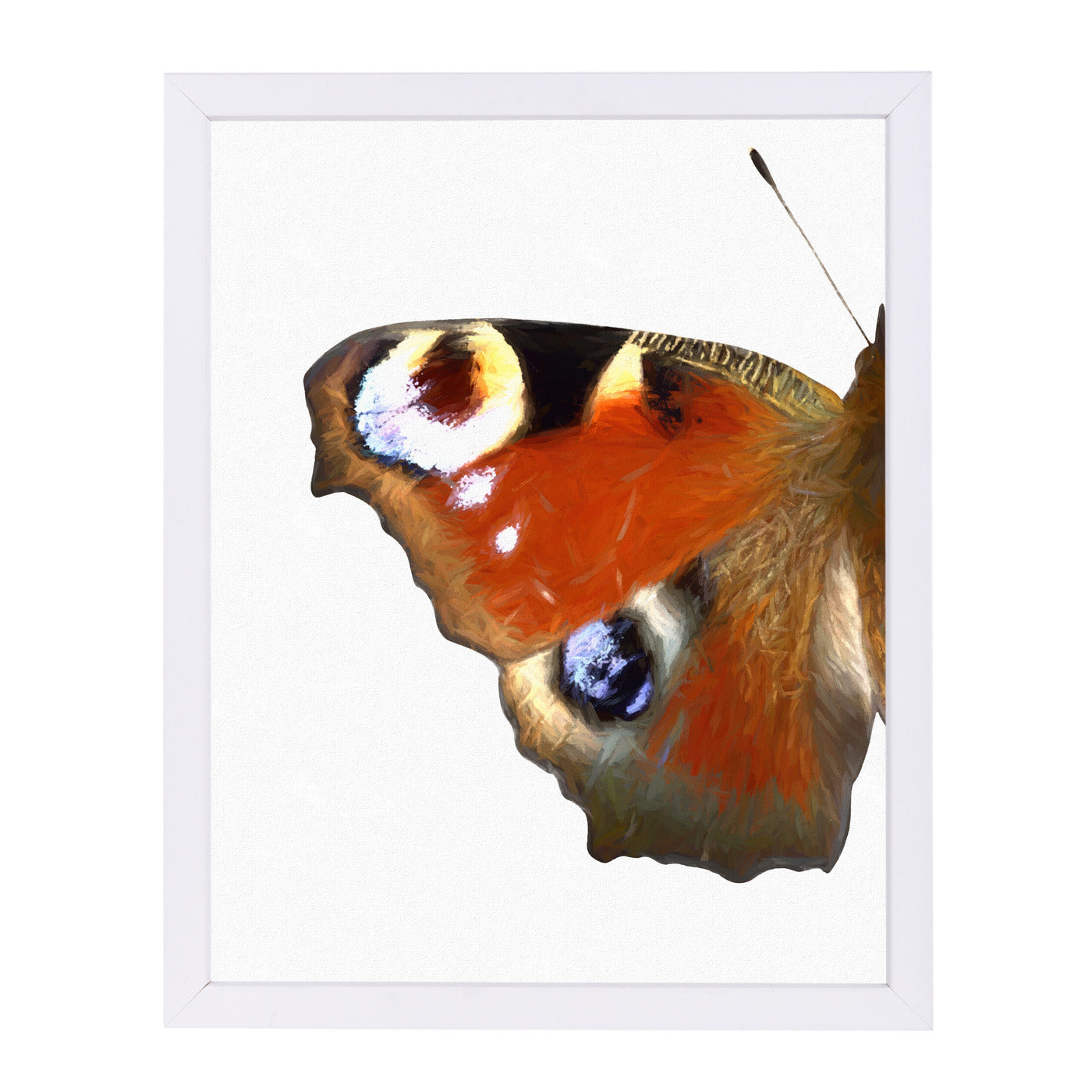 Peacock Butterfly Wing I By Chaos & Wonder Design - White Framed Print - Wall Art - Americanflat