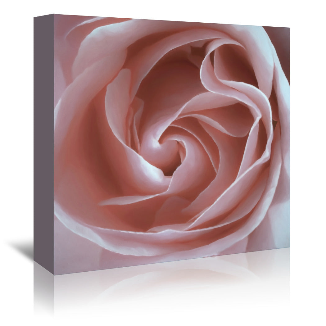 Pink Rose By Chaos & Wonder Design - Wrapped Canvas - Wrapped Canvas - Americanflat