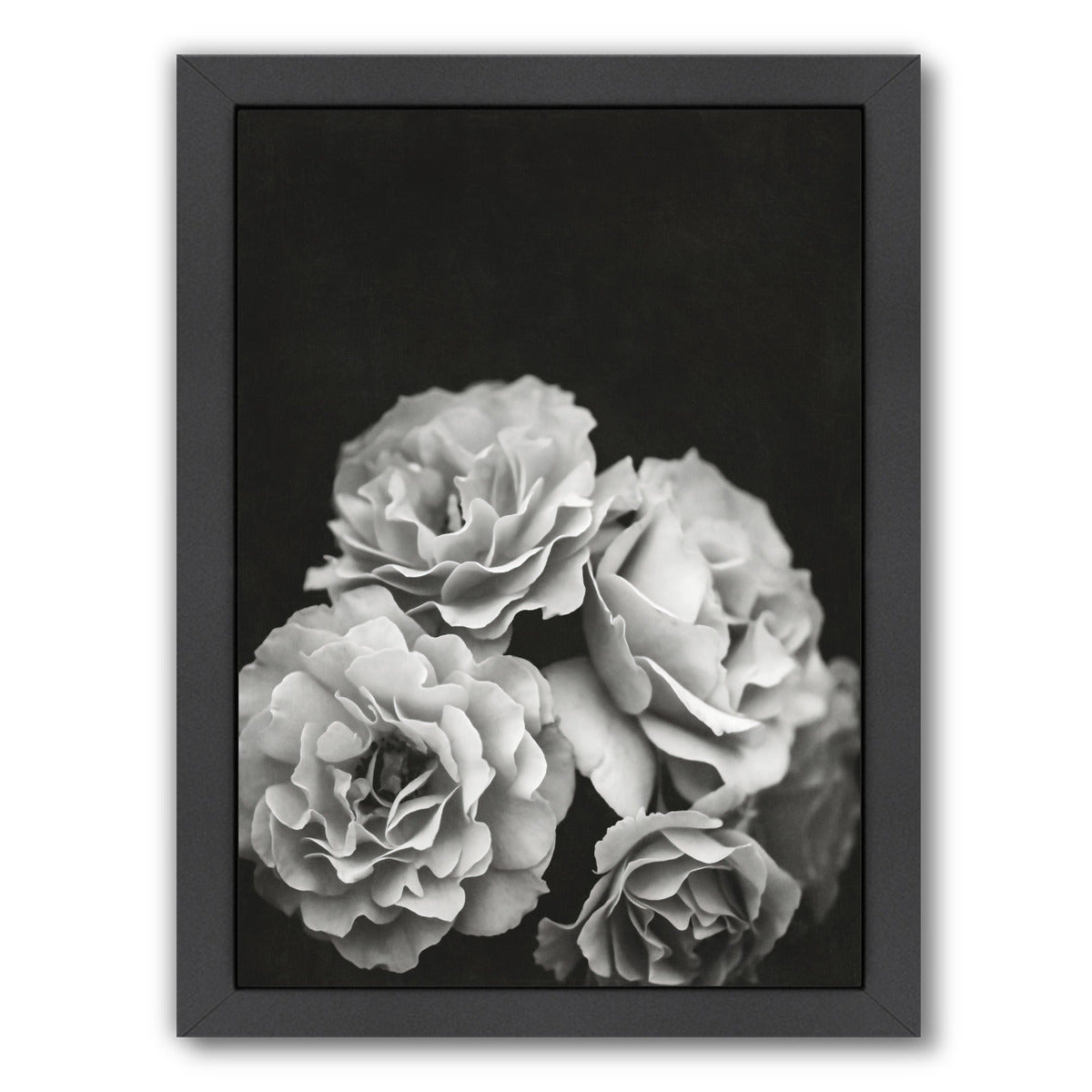 "Moody Roses By Chaos & Wonder Design - Black Framed Print, Wall Art, Chaos & Wonder Design, 8"" x 10"""