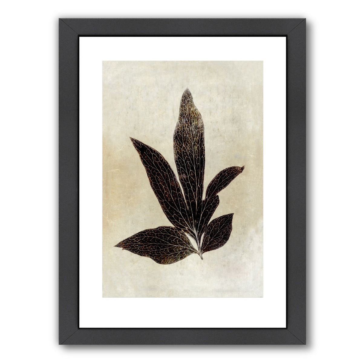 Sepia Leaf Collage I By Chaos & Wonder Design - Black Framed Print - Wall Art - Americanflat