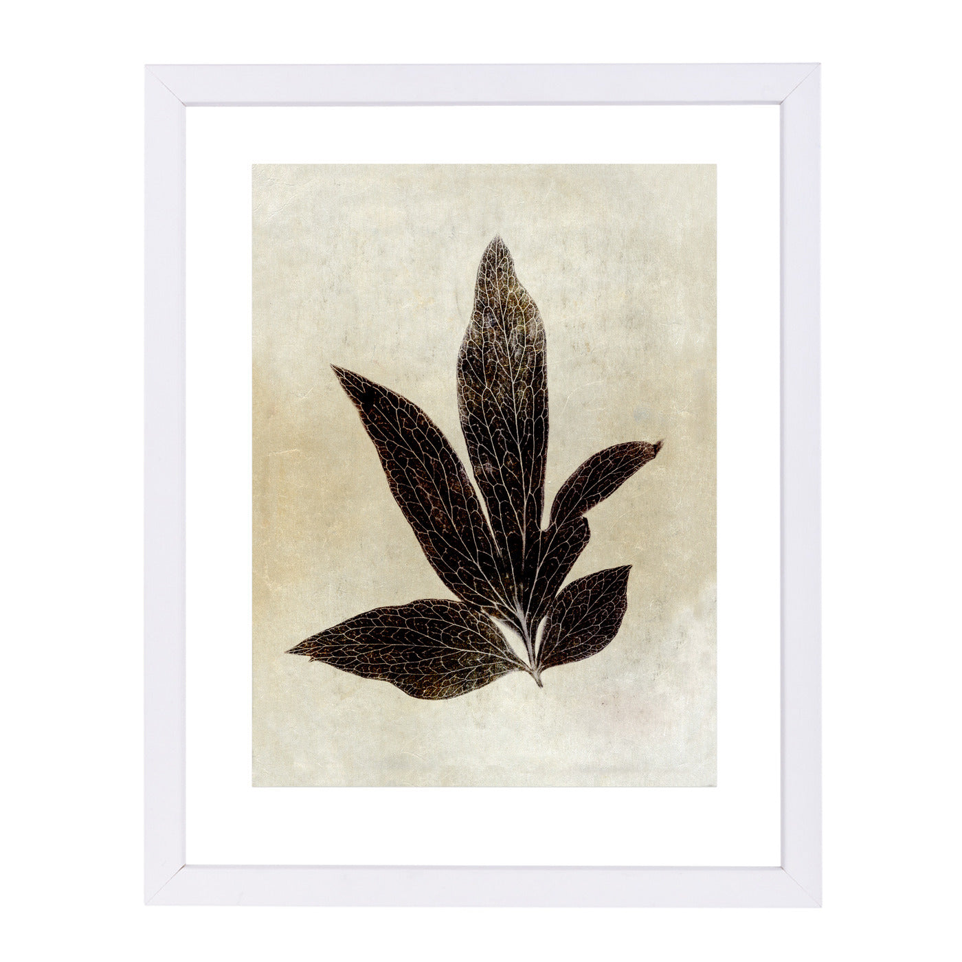 Sepia Leaf Collage I By Chaos & Wonder Design - White Framed Print - Wall Art - Americanflat