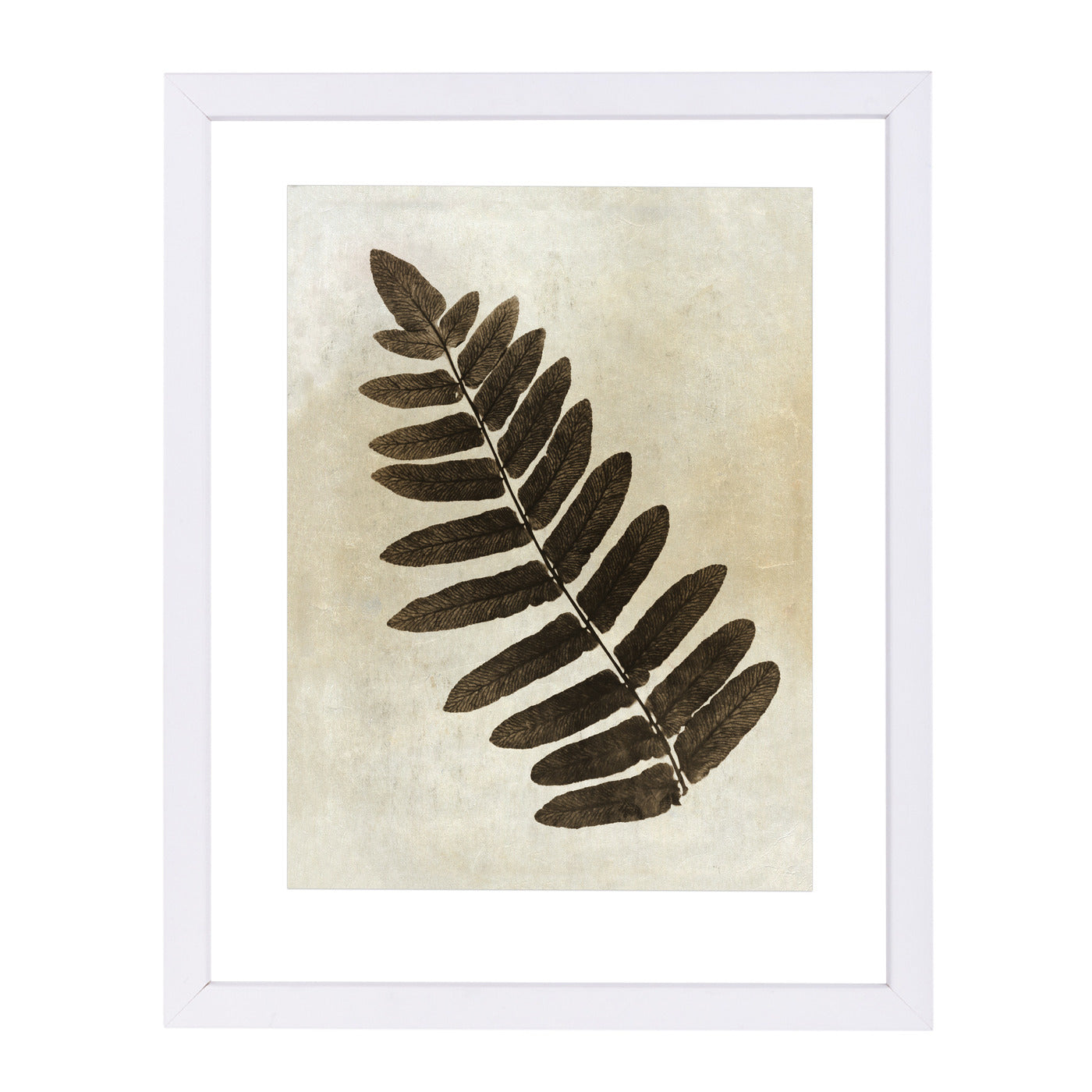 Sepia Leaf Collage Ii By Chaos & Wonder Design - White Framed Print - Wall Art - Americanflat