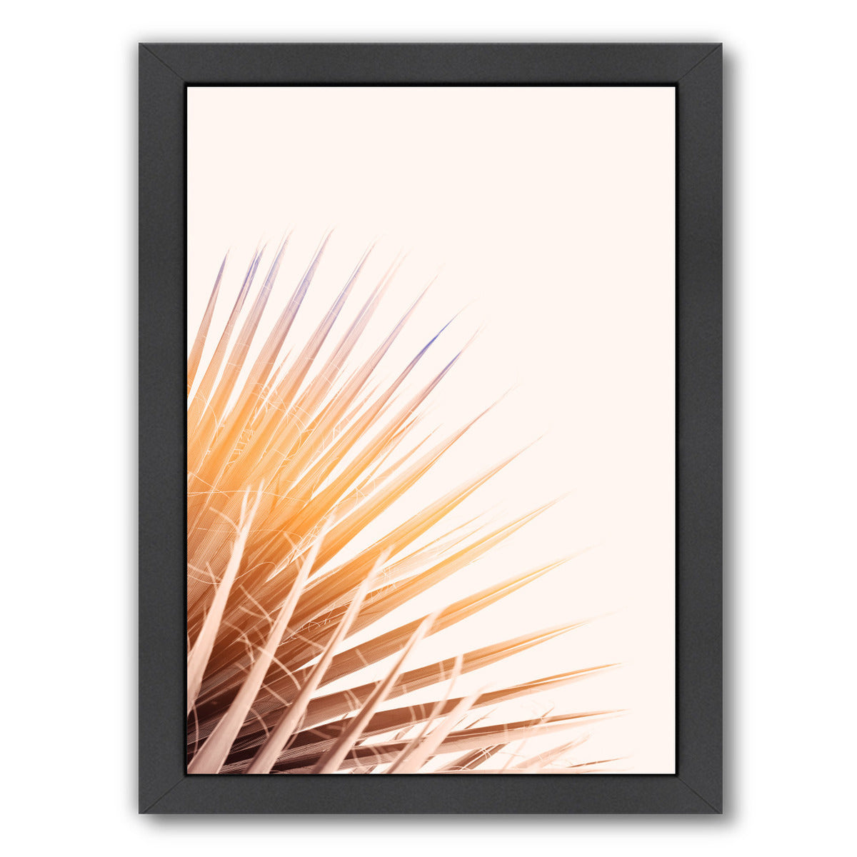 Pastel Palm By Chaos & Wonder Design - Black Framed Print - Wall Art - Americanflat