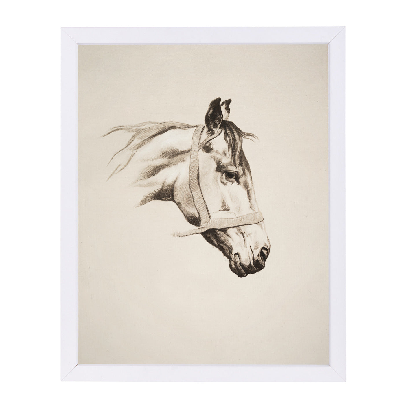 Horse Head I By Chaos & Wonder Design - White Framed Print - Wall Art - Americanflat