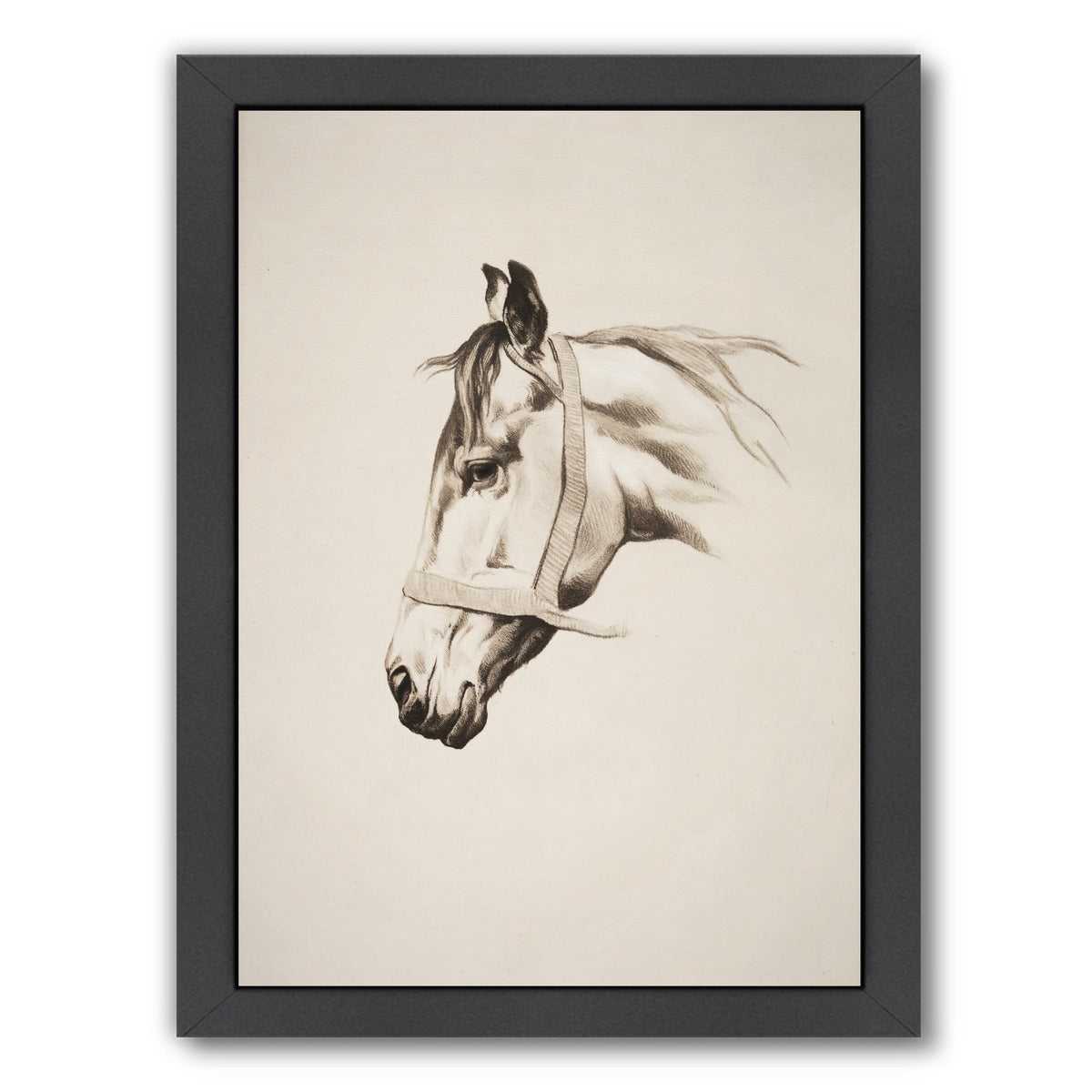 "Horse Head Ii By Chaos & Wonder Design - Black Framed Print, Wall Art, Chaos & Wonder Design, 8"" x 10"""