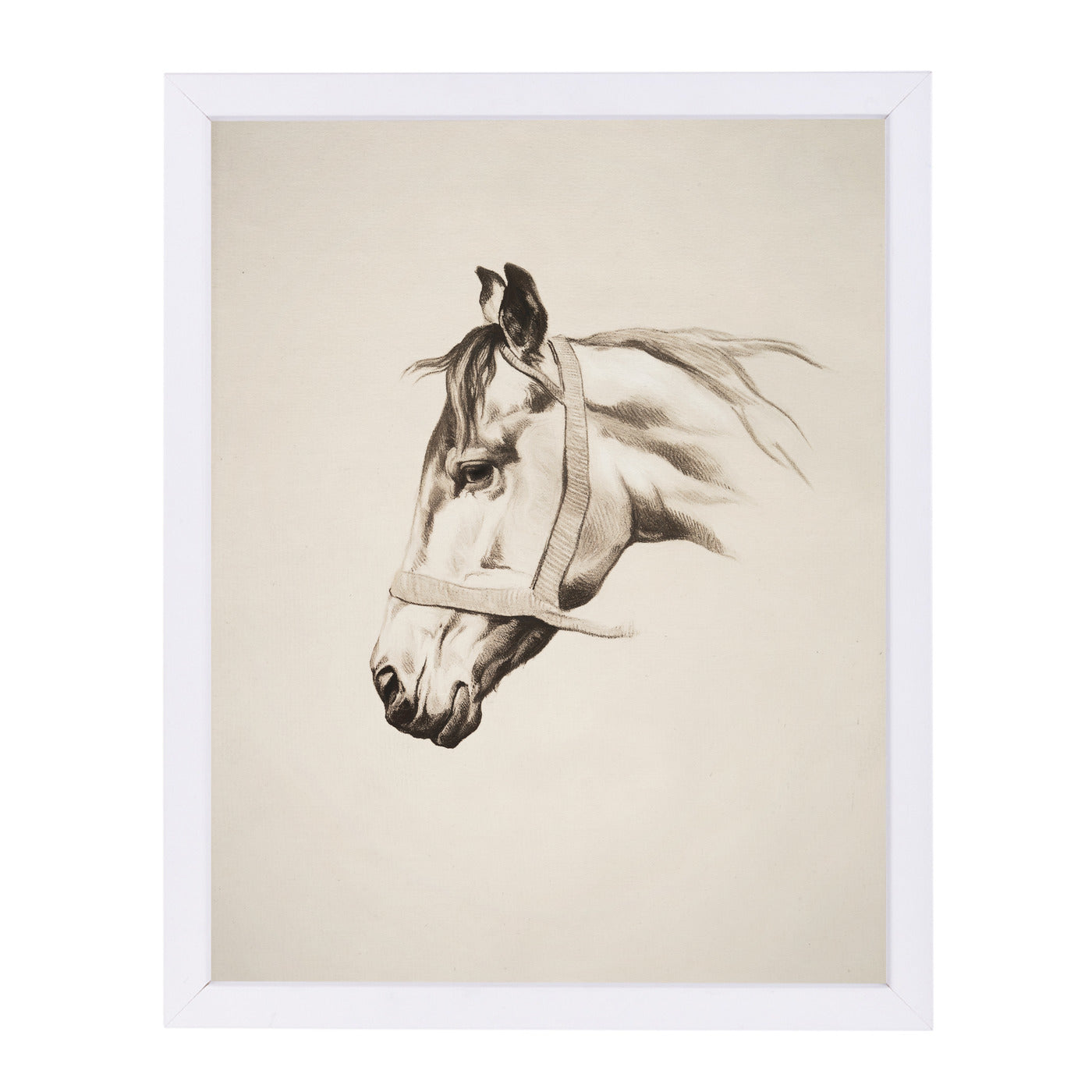 Horse Head Ii By Chaos & Wonder Design - White Framed Print - Wall Art - Americanflat