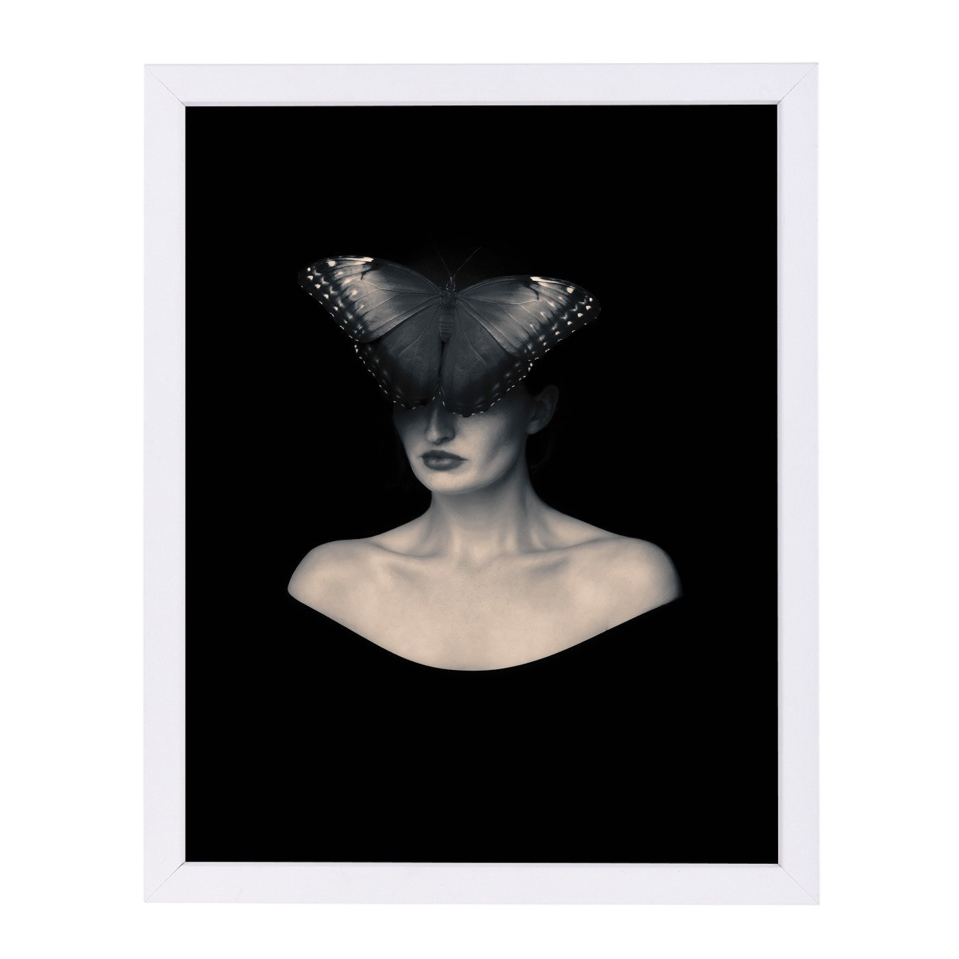 Butterfly Veil By Chaos & Wonder Design - White Framed Print - Wall Art - Americanflat