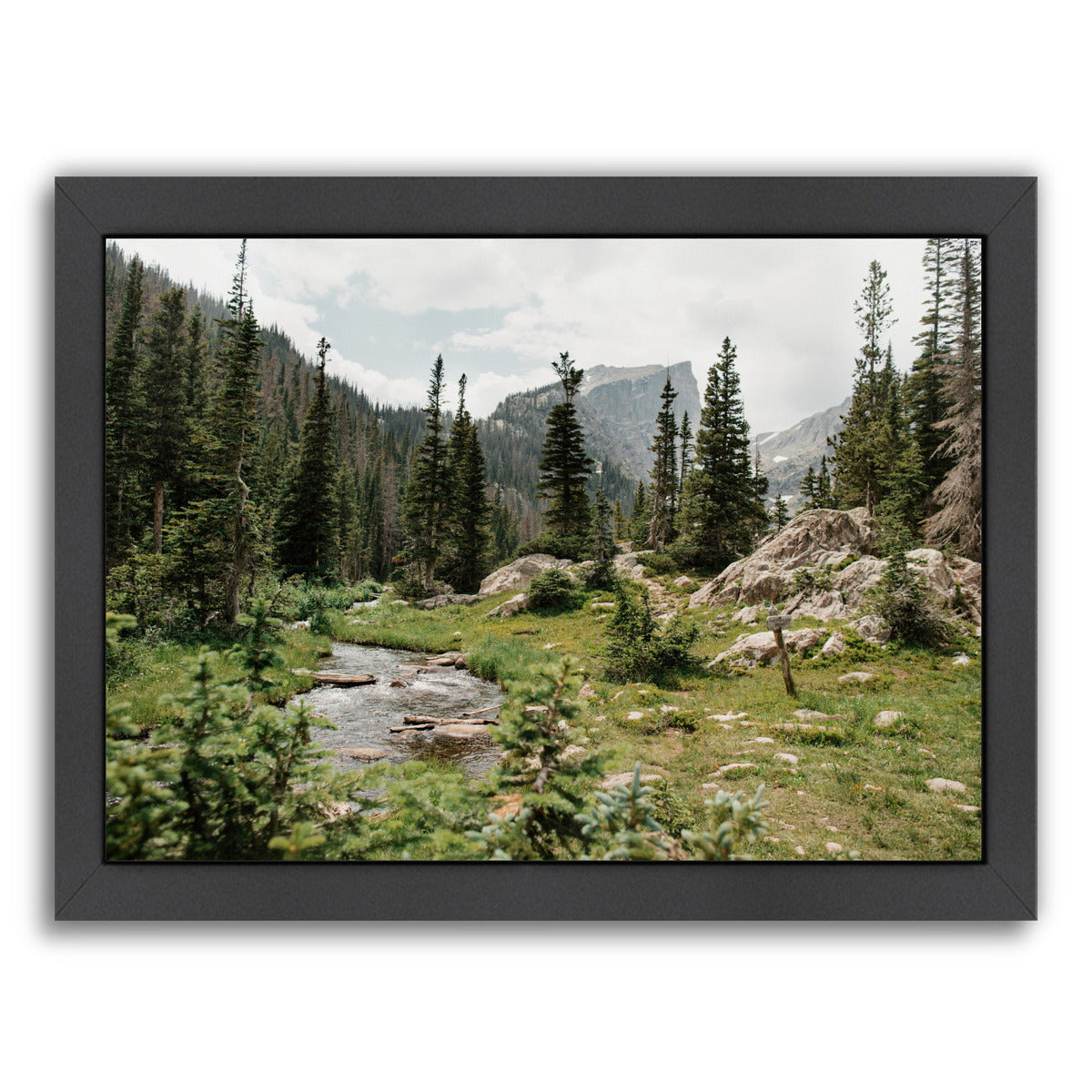 Rocky Mountain National Park By Natalie Allen - Black Framed Print - Wall Art - Americanflat