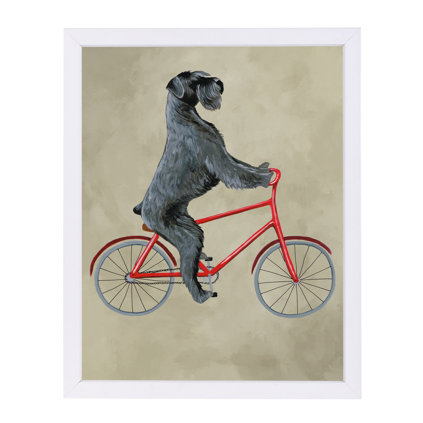 Schnauzer On Bicycle By Coco De Paris - White Framed Print - Wall Art - Americanflat