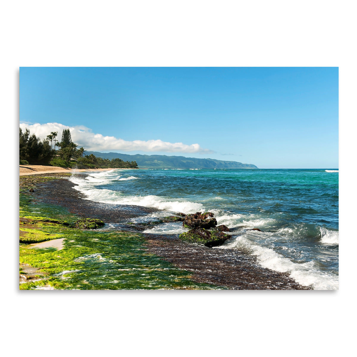 North Shore2 by Amanda Abel - Art Print - Americanflat