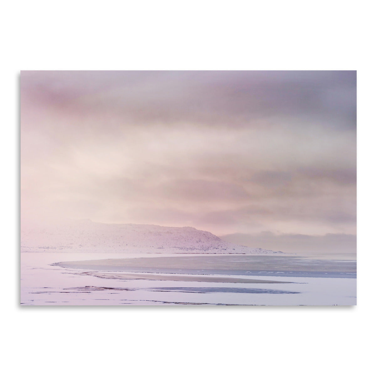 Winter Sky by Amanda Abel - Art Print - Americanflat