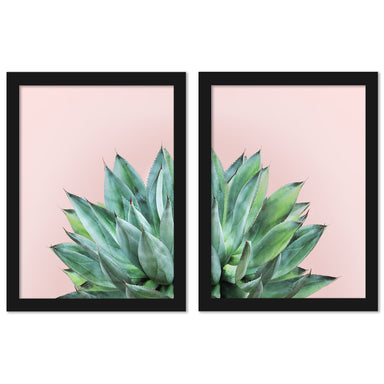 Agave On Pink by Tanya Shumkina - 2 Piece Framed Print Set - Americanflat