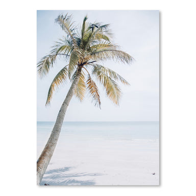 Palm On The Beach by Tanya Shumkina - Art Print - Americanflat
