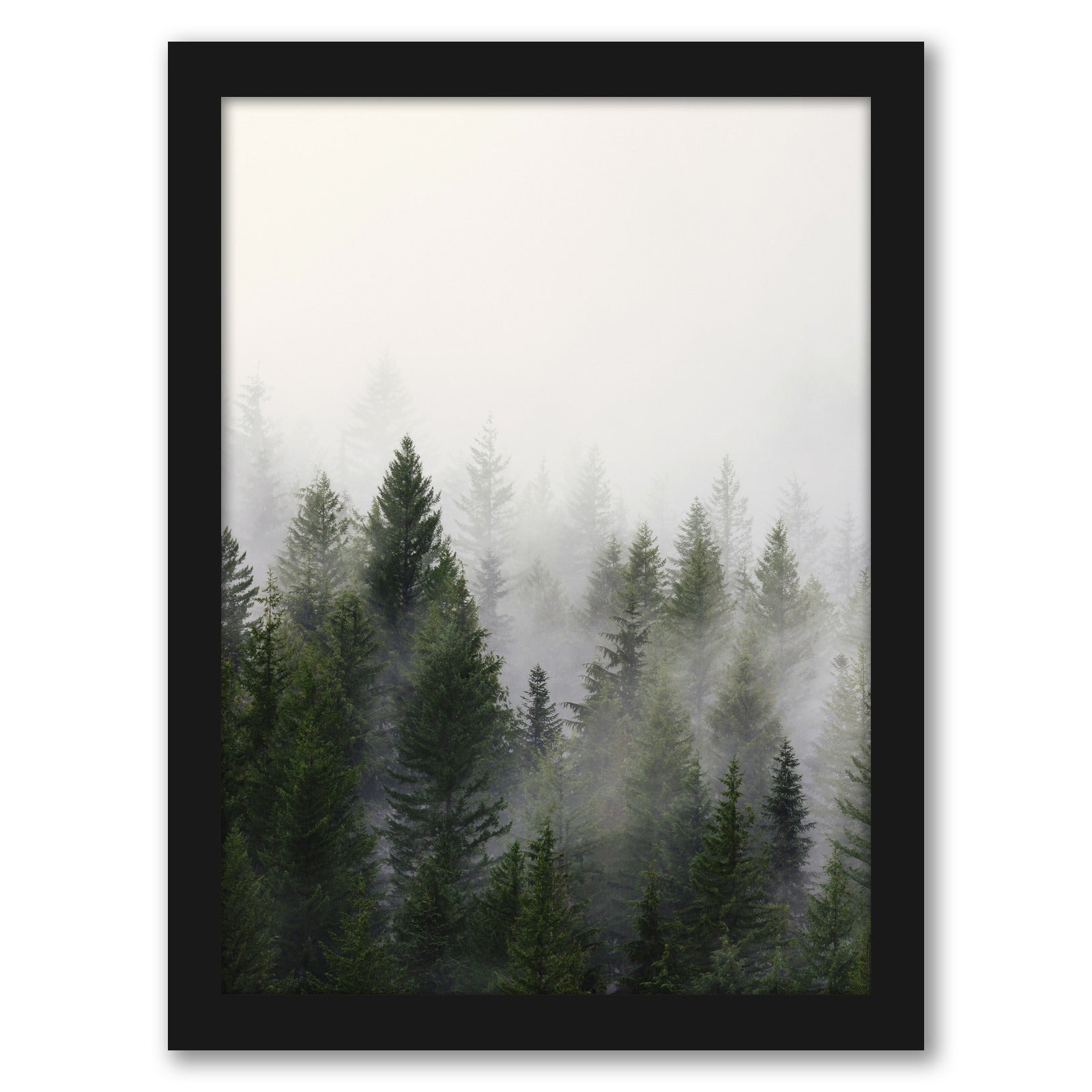 Misty Forest by Tanya Shumkina - Black Framed Print - Wall Art - Americanflat