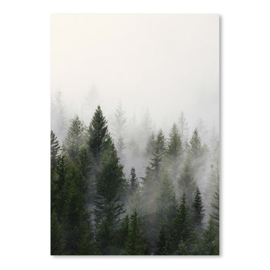 Misty Forest by Tanya Shumkina - Art Print - Americanflat