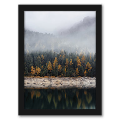 Fall Forest by Tanya Shumkina - Black Framed Print - Wall Art - Americanflat