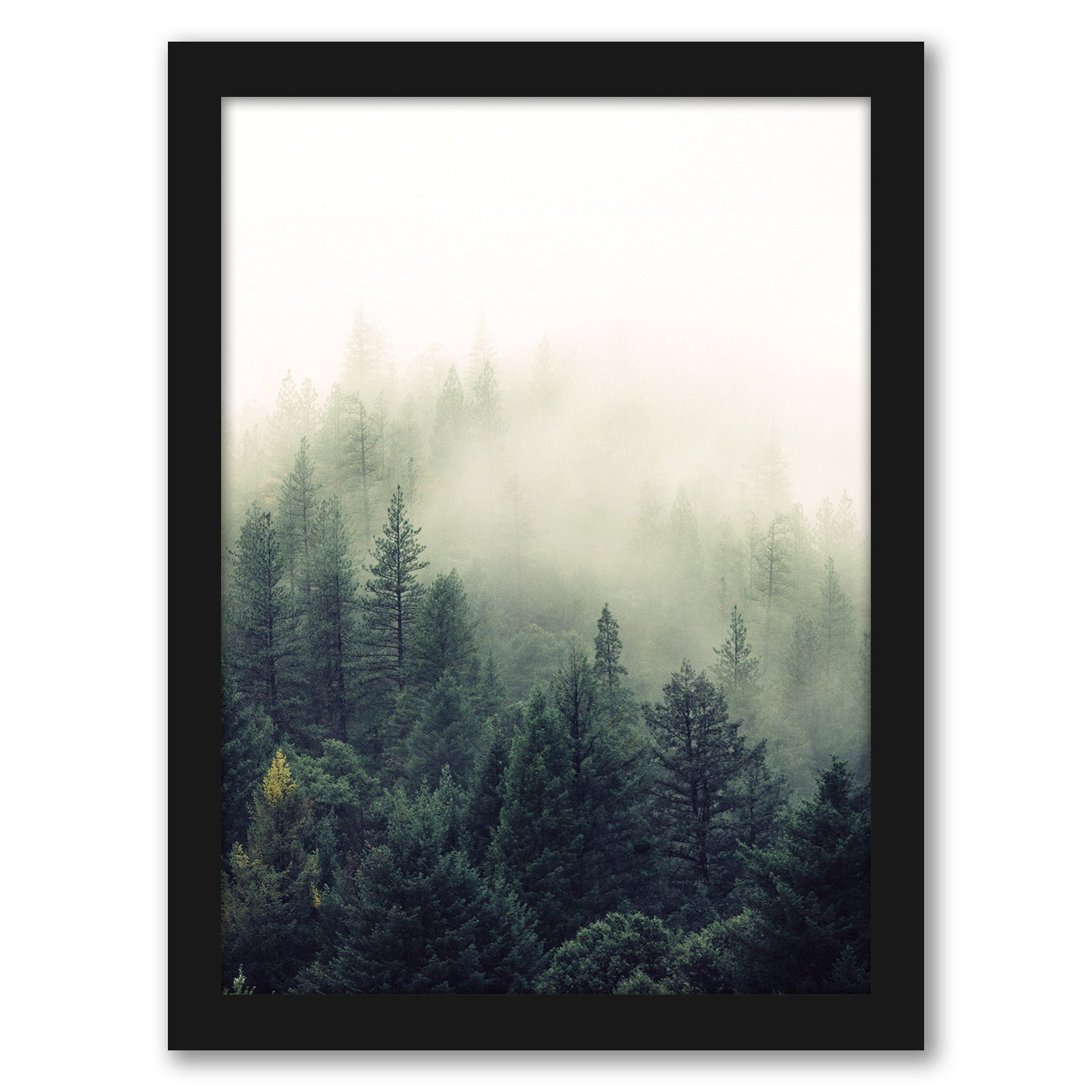 Forest Greenery by Tanya Shumkina - Black Framed Print - Wall Art - Americanflat
