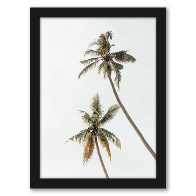 Palm Photo by Tanya Shumkina - Black Framed Print - Wall Art - Americanflat