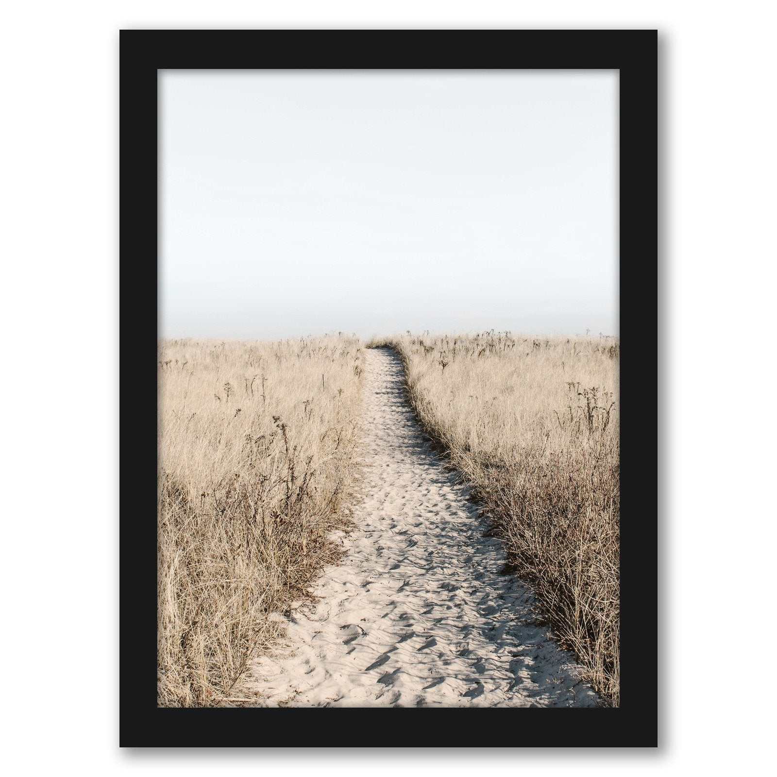 Beach Path Poster by Tanya Shumkina - Black Framed Print - Wall Art - Americanflat