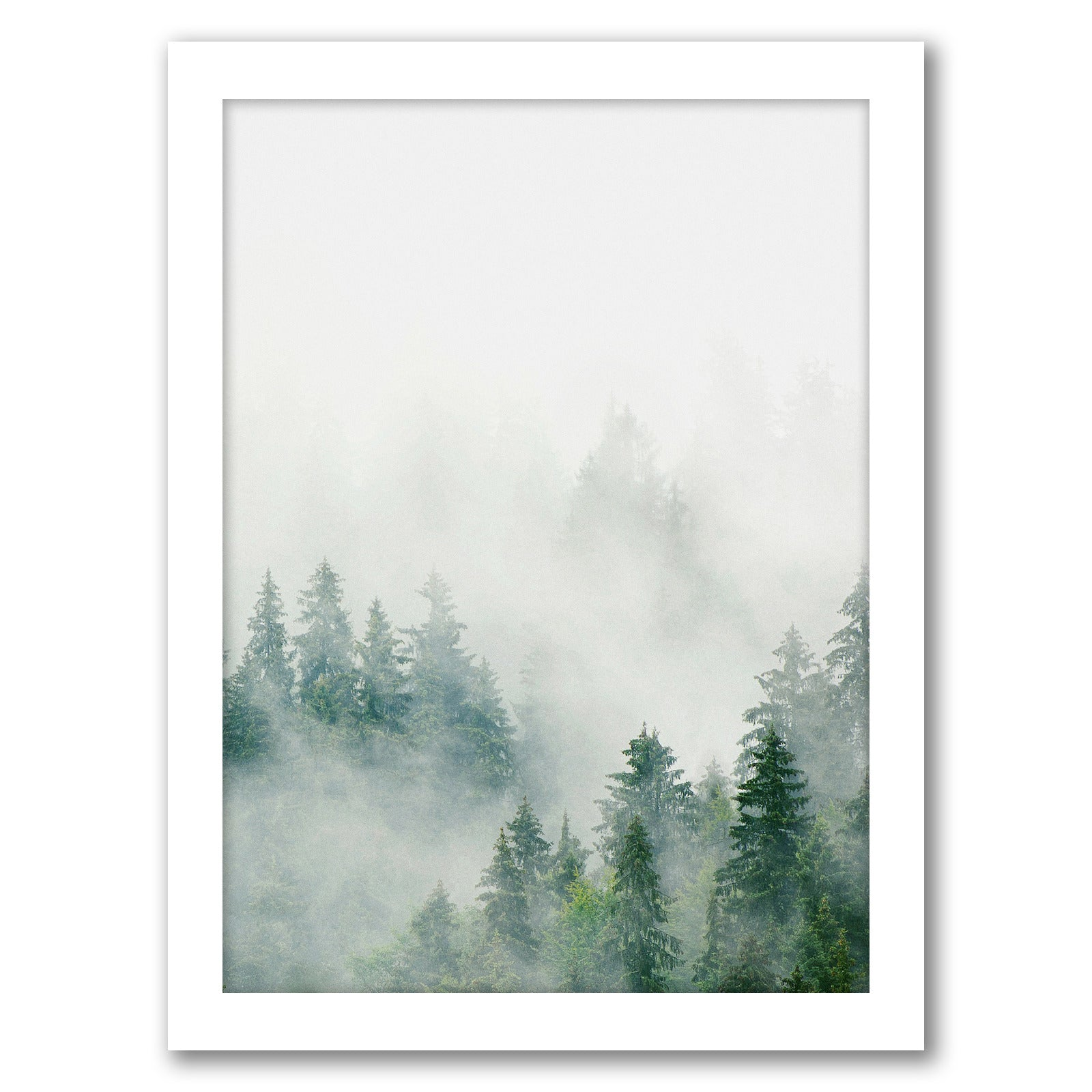 Nordic Forest Poster by Tanya Shumkina - White Framed Print - Wall Art - Americanflat
