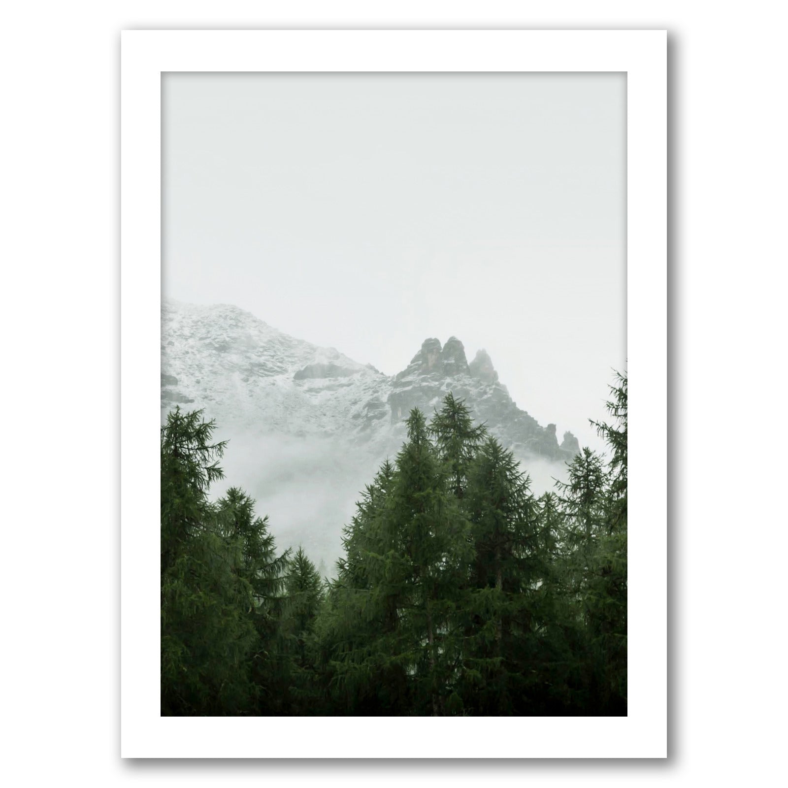 "Misty Woodland by Tanya Shumkina - White Framed Print, Wall Art, Tanya Shumkina, 8"" x 10"""