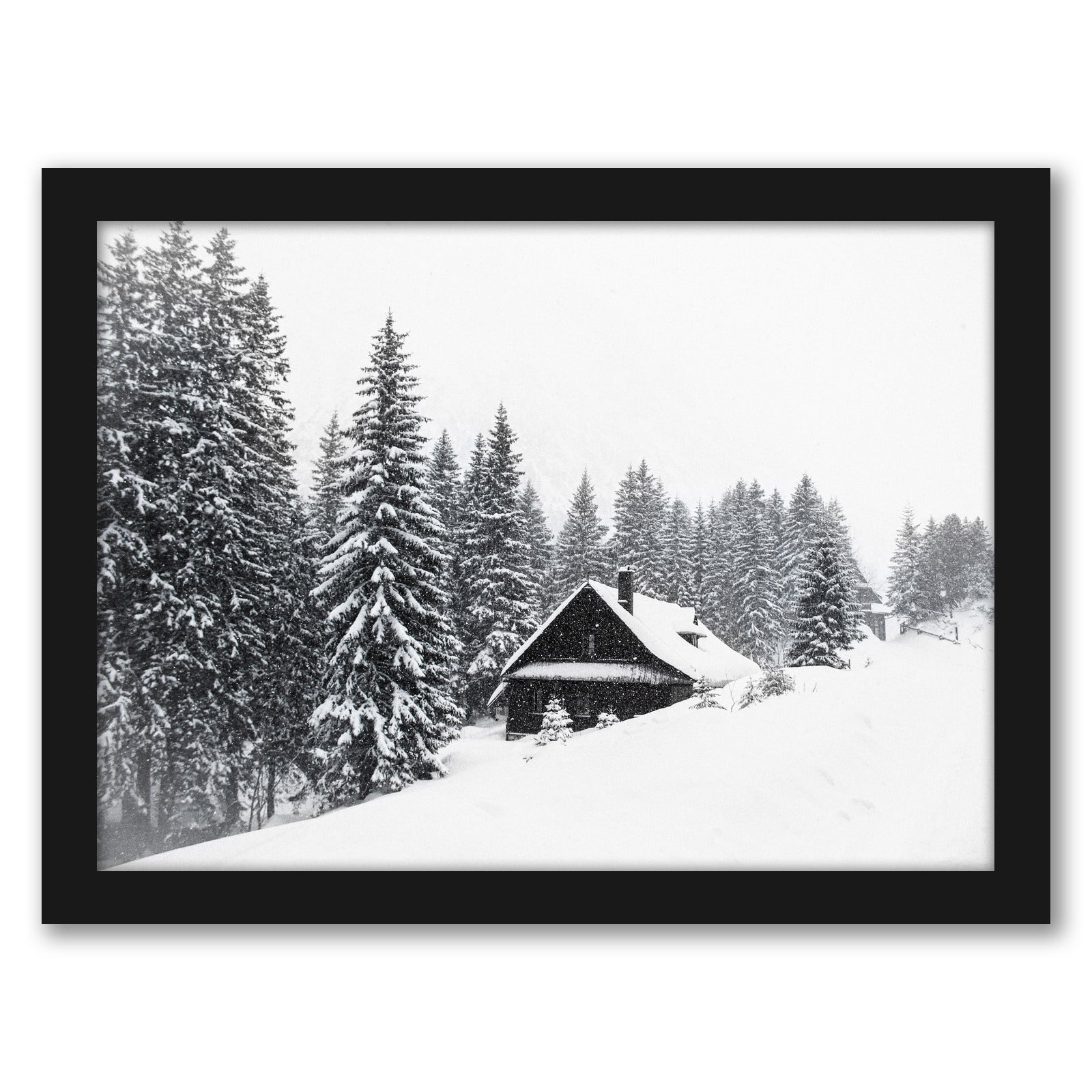 Winter Nature Scene by Tanya Shumkina - Black Framed Print - Wall Art - Americanflat