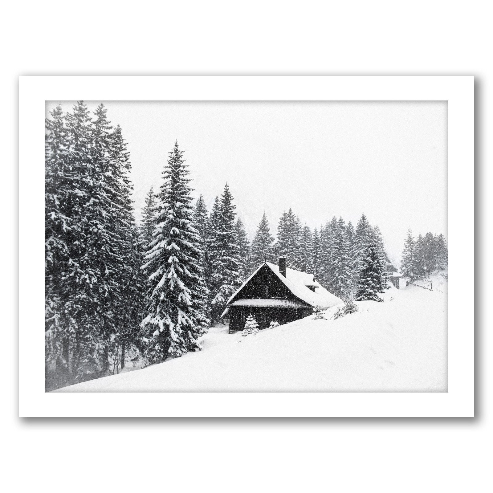 Winter Nature Scene by Tanya Shumkina - Framed Print - Americanflat