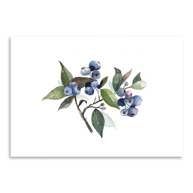Blueberry by Cami Monet - Art Print - Americanflat