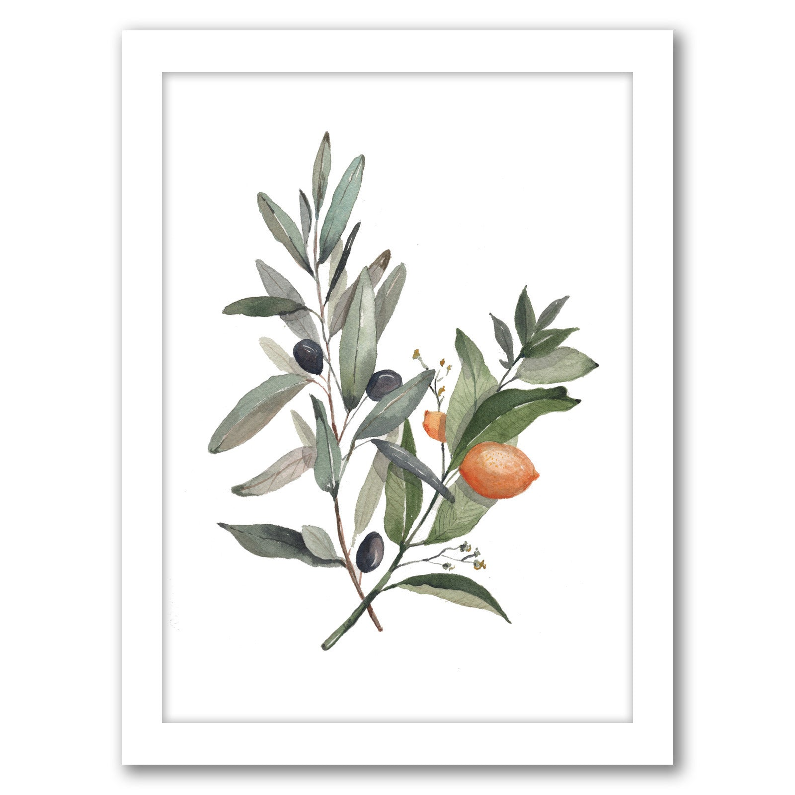 Citrus Olive by Cami Monet - Black Framed Print - Wall Art - Americanflat
